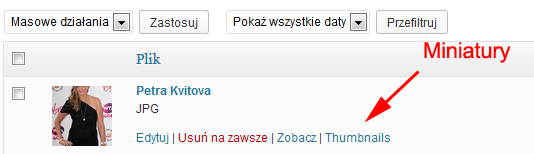 thumbnails_media_wpsamurai_pl